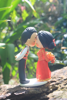 Picture of Hmong and Chinese wedding topper